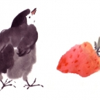 chick and strawberry